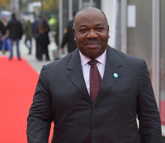 Gabon Capital Investment in Export-oriented Sectors to Hasten Growth
