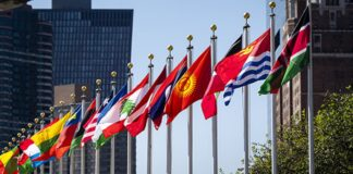 Global Economy to see 50-Year High Growth in 2021, Says UNCTAD
