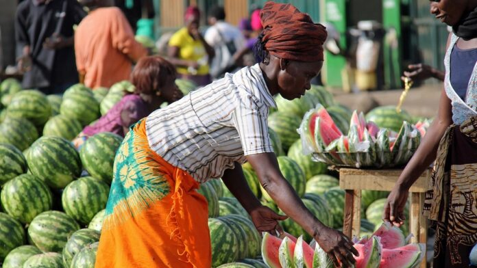 Finnfund, University of Helsinki to Invest in Microfinancing in Africa